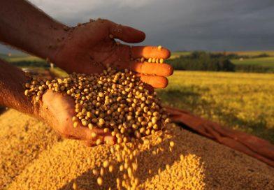 China vai comprar mais soja do Brasil e diminuir compras dos Estados Unidos